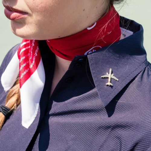 Flugzeug Pin Airbus A321 gold